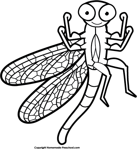 Free Dragonfly Clipart Black And White Home Free Clipart Dragonfly