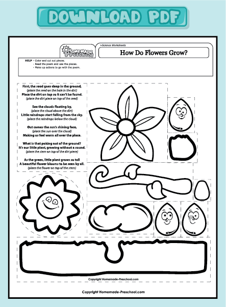 home preschool worksheets preschool science worksheets how do flowers ...