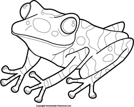 poisonous frog coloring pages - photo#17