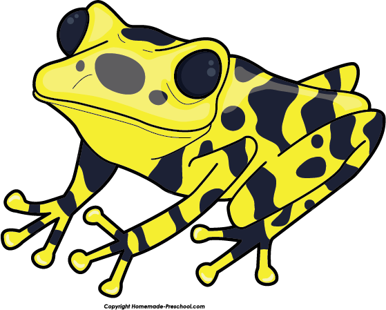 Poison dart frog clip art - photo#6