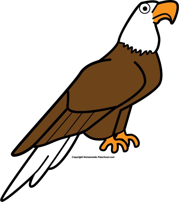 free bald eagle clipart - photo #33
