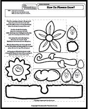 Caring for My Plant – Kindergarten Coloring Worksheet – JumpStart